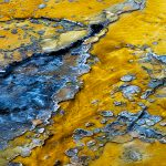 Mineral Pool, Yellowstone National Park