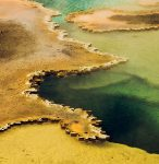 Mineral Pool, Yellowstone
